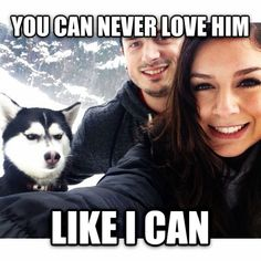 11 Sassy Huskies Who Are So Over These Humans And Their Nonsense