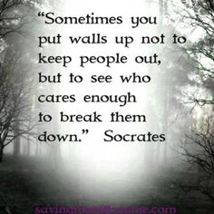 """Sometimes you put walls up not to keep people out, but to see who cares enough to break them down."""