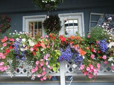 Windowboxes are always 'charming'