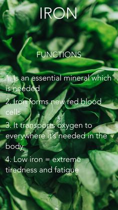 The functions of iron & why it is important to eat those leafy greens!  Functions:   1. Iron is an essential mineral which is needed  2. Iron forms new red blood cells  3. It transports oxygen to everywhere it's needed in the body  4. Low iron may lead to extreme tiredness and fatigue   #health #organic #healthylifestyle # iron #spinach #foodie Spinach Iron, Extreme Tiredness, Red Blood Cells, Minerals, Healthy Lifestyle, Organic, Eat, Gemstones, Mineral