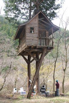 Tiny Houses, gabrielcraft: YUICHI TAKEUCHI + treeheads |...