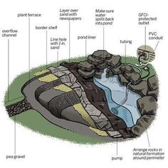 How to create a free-form backyard pond in just one day!   Illustration: Gregory Nemec   thisoldhouse.com #Ponds
