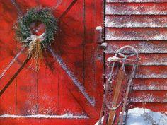 Old Red doors...pine wreath & vintage sled.