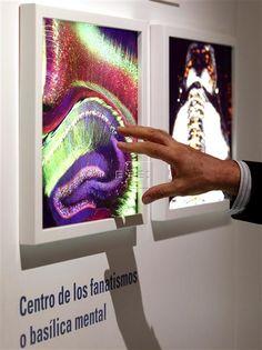 Madrid, 1 may (EFEverde).- Hoy se cumplen 160 años del nacimiento de Santiago Ramón y Cajal, padre de la neurociencia moderna y Google le dedica su página principal, con la imagen de perfil del científico en medio de un dibujo de un árbol que imita las terminaciones del sistema nervioso.