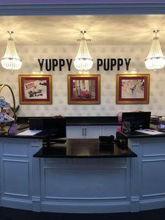 #YuppyPuppy #PetSpa #OFallon #MO