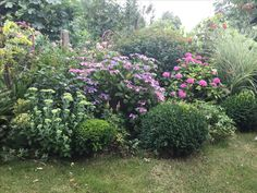 Gardens, Small City Garden