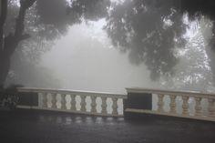 Darjeeling w West Bengal