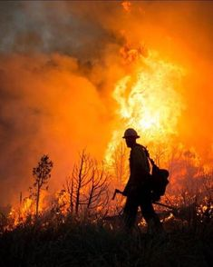 Earn Money Taking Pictures - . Earn Money Taking Pictures - Photography Jobs Online Firefighter Humor, Wildland Firefighter, Fire Dept, Fire Department, Heroes Fire, California Wildfires, Wild Fire, Photography Jobs, Fire Engine