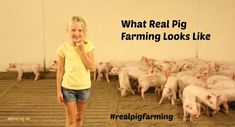 What real pig farming looks like. Kids on the farm. Farmer Quotes, Summer Beach Quotes, Farm Pictures, Farm Kids, Ocean Quotes, Things About Boyfriends, Pig Farming, Crush Quotes, Quotes Quotes