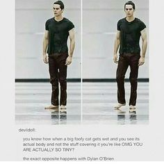 And that's why we've never seen a shirtless Stiles. He would be as well built as the werewolves. Dylan O'brien, Teen Wolf Dylan, Teen Wolf Stiles, Teen Wolf Cast, Tyler Posey, Mtv, Teen Wolf Memes, Teen Wolf Funny, O Brian