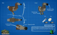 JurassicCraft Dodo Jurassic Craft, Jurassic Park, Be The Creature, Flightless Bird, Minecraft Creations, Prehistoric Creatures, Pokemon, Fan Art, Crafts