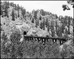 Gold Camp Camp Road ~ Above Colorado Springs Colo ~ 1925