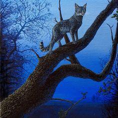 Wild Blue, Cat acrylic painting.