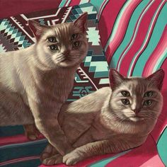 Uncle Bob and Aunt Frida seeing double after frequenting the open catnip bar!!