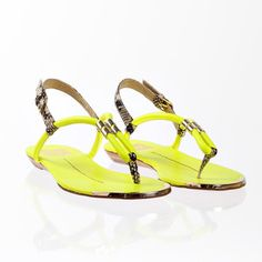 Ayden Acid Yellow, $69, now featured on Fab.