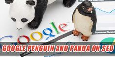 Complete details about Google panda and Google penguin updates.