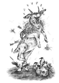 Black And White Words, Danse Macabre, Graphite Drawings, Circle Of Life, Pencil Art, Goats, Giclee Print, Moose Art, Illustration Art