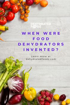 Read on to learn when were food dehydrators invented. #dehydrators #fooddehydrator #dehydrator Dried Vegetables, Fruits And Vegetables, Dehydrators, Food Out, Dehydrated Food, Dehydrator Recipes, Beef Jerky, Healthy Snacks For Kids, Foods To Eat