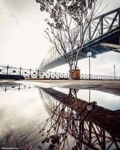WHO LOVES FOG??? - Here is a very rare occasion where our famous harbour bridge is covered in low fog. I also found a sneaky puddle for a reflection.  by @theinkedshooter. Chosen by @sarah.sturm a #LightAwards LIVE winner in Adelaide and our guest curator this weekend. 'This photo! The Sydney Harbour Bridge is such an Australian Icon that its hard to find photographs that havent been seen before however to say that this photograph has knocked my socks off is an understatement. This photo…