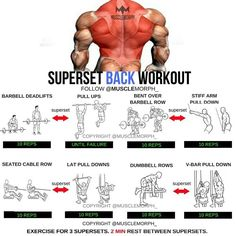 4 Back Workout Plan To Help Sculpt Sexy Back & Shoulder – Lasting Training dot Com Fitness Workouts, Fitness Motivation, Fun Workouts, Fitness Tips, Super Set Workouts, Weight Workouts, Workout Ideas, Motivation Sportive, Chest Workouts