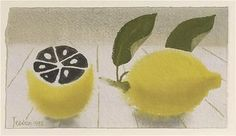 Mary Fedden, lemon Gouache Painting, Abstract Paintings, Oranges And Lemons, Still Life Art, Natural Forms, Mellow Yellow, Pretty Pictures, Design Art, Illustration Art