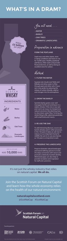 Do you want to be a better bartender? at Be A Better Bartender we want to make you better. Weekly articles and guides published in order to make you better. Bourbon Whiskey, Scotch Whisky, World Of Whisky, Gaelic Words, Alcoholic Drinks, Cocktails, Liqueurs, Mixed Drinks, Bartender