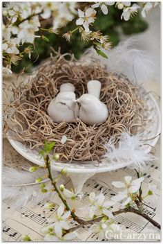 ~ Excelcier Nest w/ Love Birds ~ Love the idea of Sheet Music Under it....Favorite Song for each place at the table....