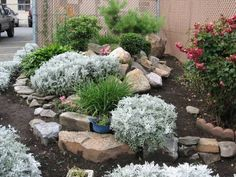 Garden Rockery Ideas for your Yard