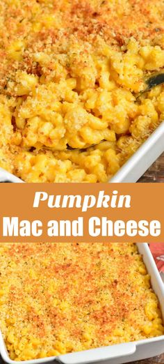 Amazing Pumpkin Mac and Cheese that is creamy, cheesy, and baked in the oven wit. - Amazing Pumpkin Mac and Cheese that is creamy, cheesy, and baked in the oven with a buttery bread c - Pumpkin Dishes, Savory Pumpkin Recipes, Pumpkin Pasta, Healthy Pumpkin, Yummy Pasta Recipes, Side Dish Recipes, Vegetarian Recipes, Cooking Recipes, Easy Dinner Recipes