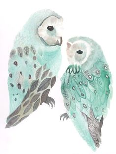 turquoise watercolor owls....so pretty! via VT Interiors