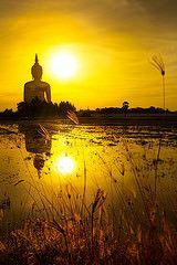 Great Buddha of Thailand, Buddha statue at Wat Muang, Ang Thong largest in the world Buddha Zen, Gautama Buddha, Buddha Buddhism, Buddhist Art, Zen Meditation, Buddha Background, Buda Wallpaper, Golden Buddha, Buddha Tattoos