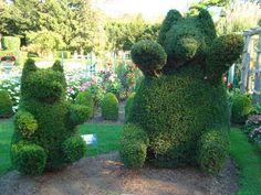 Mama and baby bear at Green Animals Topiary Garden in RI Garden Deco, Garden Art, Animal Sculptures, Garden Sculptures, Last Minute Hotel Deals, Cross Country Trip, Topiary Garden, Green Animals, Rose Pictures