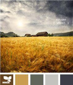 autumn wheat palette from design seeds Room Colors, House Colors, Paint Colors, Bedroom Colours, Colour Schemes, Color Combos, Paleta Pantone, Color Palate, Design Seeds