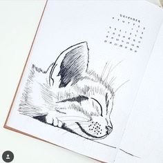 "64 Likes, 5 Comments - Bullet journal inspiration... (@bullet_journaling_it_is) on Instagram: ""Love the little plant #doodles by @olive_writes #bulletjournalitis #bulletjournal #calligraphy…"""