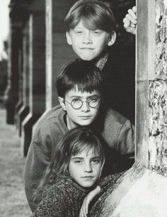Ron, Harry and Herminoe