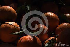 Oranges with leaflets. Fruit. Tasty food. Healthy food.