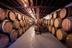 Old Wine Barrels - Fototapeter & Tapeter - Photowall