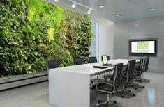 Wonderful Green Living Wall Brings Peaceful Atmosphere and Nice View: Invite The Living Wall Into Your Office Space As Green Facade, Green Office, Green Architecture, Landscape Architecture, Garden Living, Plant Wall, Indoor Garden, Balcony Garden, Wall Design