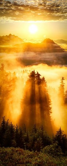 Evergreen Mountain Lookout, Cascade Mountains, Washington