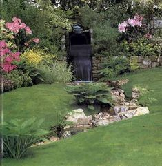 Water Garden Ideas--a little high-end for me, but has some food for thought