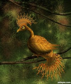 Exotic Golden Bird