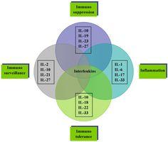 Understanding #interleukin #immunology