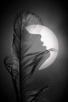 Information Alert : ایک مدت سے کہیں گم ہے میرا نصف وجود ایک مدت سے میری نیند جدا، خواب جدا Double Exposure Photography, Moon Photography, Surrealism Photography, Creative Photography, Illusion Kunst, Illusion Art, Beautiful Moon, Moon Art, Dark Art