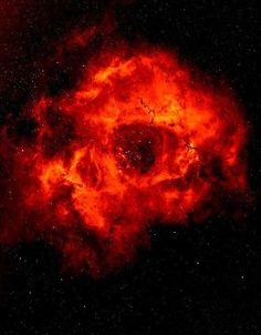 The Rosette Nebula is a large, circular H II region located on the edge of a…