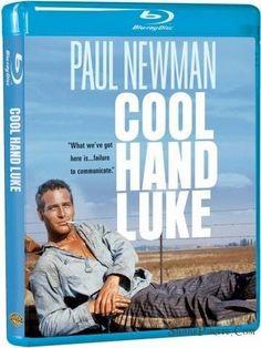 Cool Hand Luke 1967 Movie Bluray 720p cover