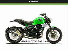 Kawasaki ER6S (scrambler edittion)