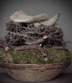 Authentieke Nepalese schaal Nature Decor, Nature Crafts, Natural Living, Grey Clouds, Finding A House, Fall Flowers, Wabi Sabi, Rustic Christmas, Christmas Inspiration