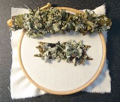How to Make a Lichen Covered Branch Hand Embroidery Online Class Silk Ribbon Embroidery, Embroidery Hoop Art, Embroidery Patterns, Textiles Techniques, Embroidery Techniques, Embroidery Online, Creative Textiles, Art Textile, Fiber Art
