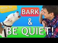 [Watch Video] How to Teach your Dog to Bark and STOP BARKING!