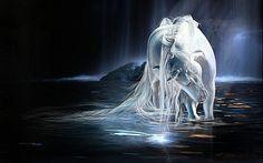 Horse art painting fantasy f wallpaper x Unicorn Fantasy, Unicorn Horse, Unicorn Art, White Unicorn, 3d Desktop Wallpaper, Horse Wallpaper, Wallpapers, Beautiful Unicorn, Beautiful Horses